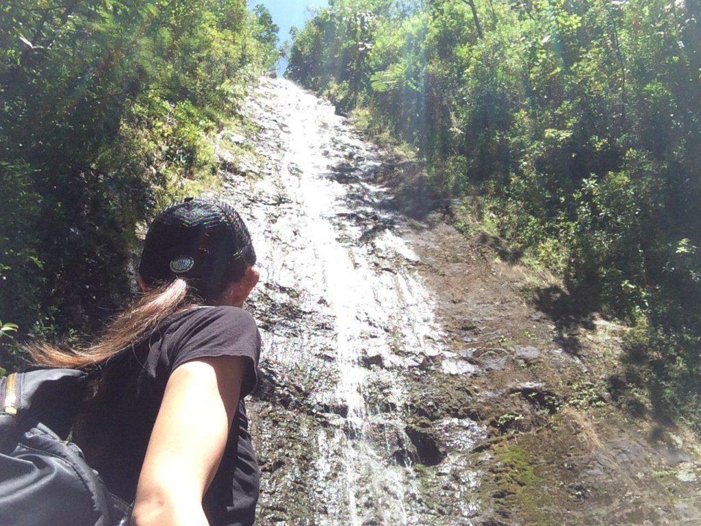 いちどは行ってみたい! ハワイ オアフ島 マノアの滝