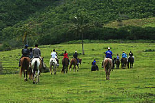 【スポーツアクティビティ】クアロアランチ(ジップライン&乗馬)