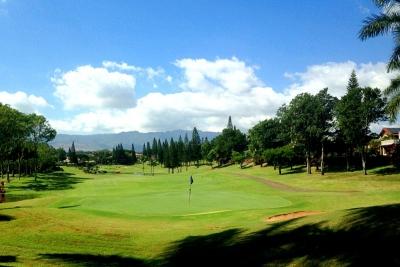 エバビーチゴルフクラブ コース写真2